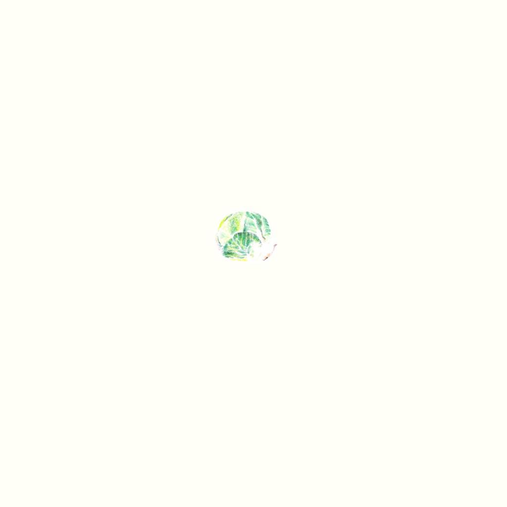 spruitje-03-zoom